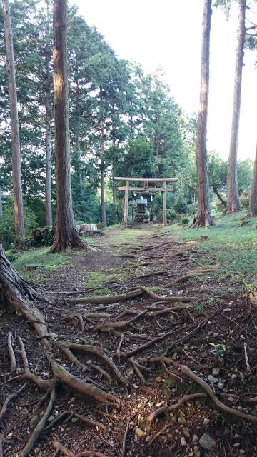 埼玉県天神社の建物その他