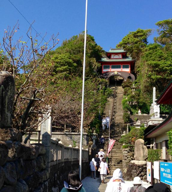 高知県津照寺の写真