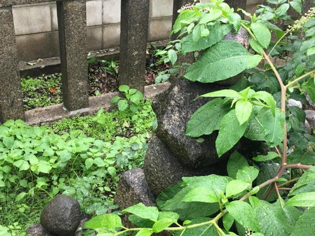 旭神社の自然