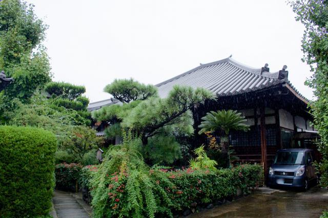 豊国神社の近くの神社お寺|称名寺