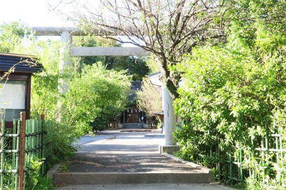 菅原神社(子安天満宮)の鳥居