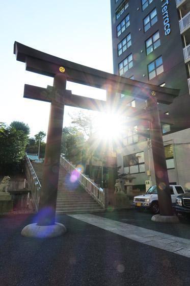白金氷川神社(東京都白金高輪駅) - 鳥居の写真