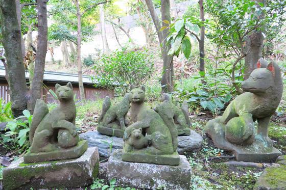 白金氷川神社(東京都白金高輪駅) - 狛犬の写真