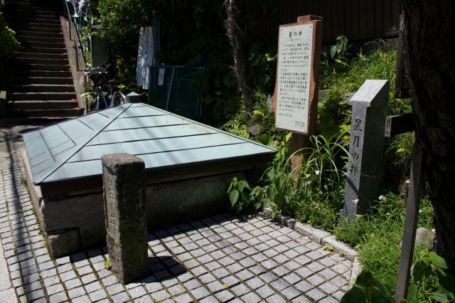 星井寺の建物その他