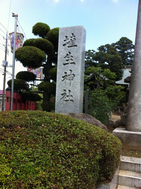権現神社の近くの神社お寺|埴生神社