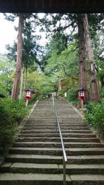 大善寺の自然
