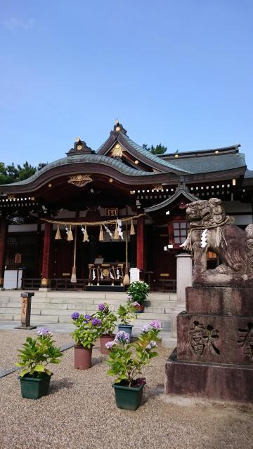 大阪府辛國神社の本殿
