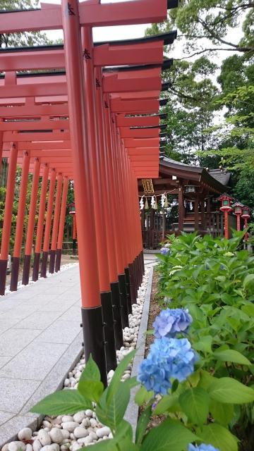 大阪府辛國神社の鳥居