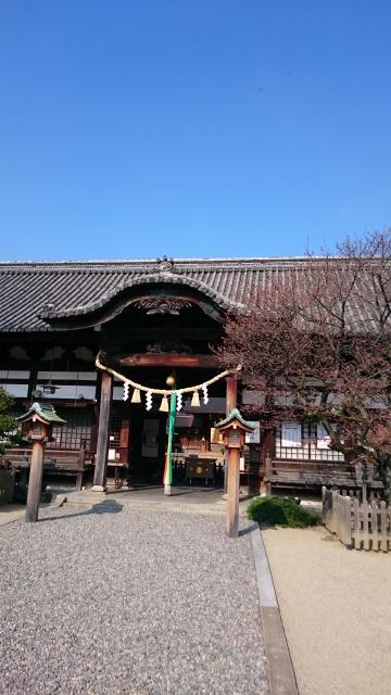 大阪府誉田八幡宮の本殿