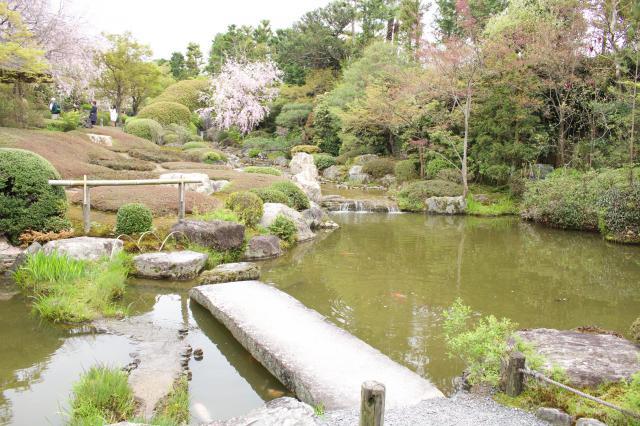 退蔵院の庭園