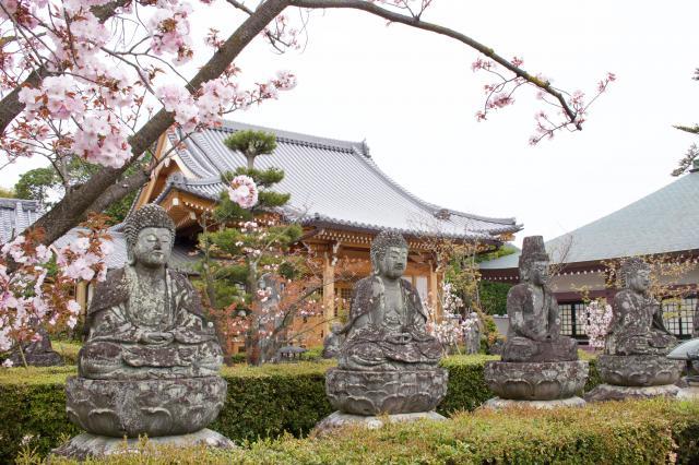 仁和寺の近くの神社お寺|蓮華寺