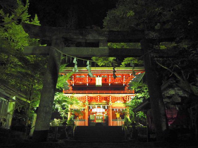 茨城県花園神社の鳥居
