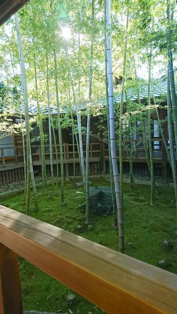 妙顕寺の自然