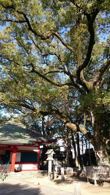 大依羅神社の写真