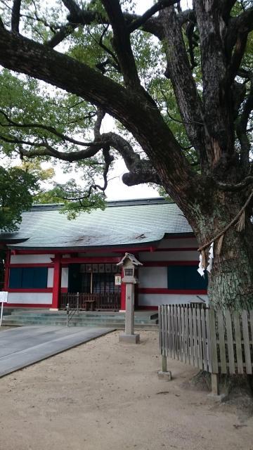 大依羅神社(大阪府あびこ駅) - 自然の写真