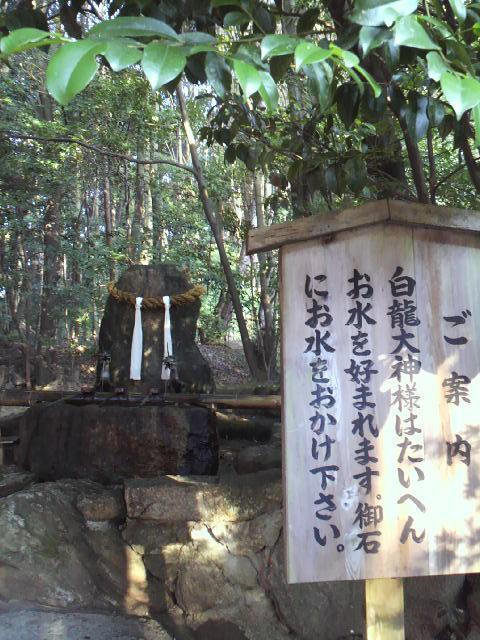 龍田大社の自然