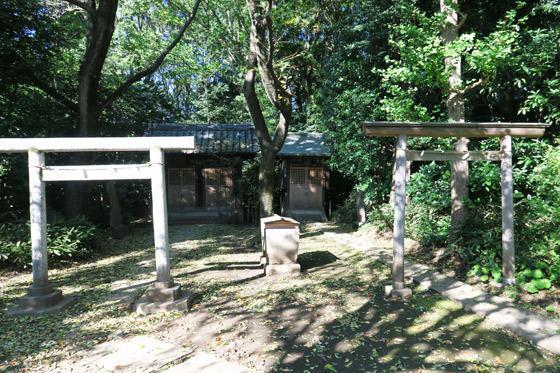 東京都石神井氷川神社の鳥居