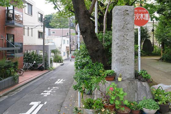 東京都多武峯内藤神社の自然