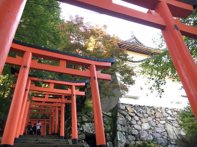 兵庫県有子山稲荷神社の本殿