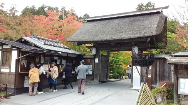 宮城県円通院の山門