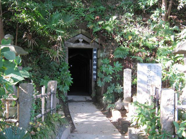 定泉寺(神奈川県大船駅) - 自然の写真