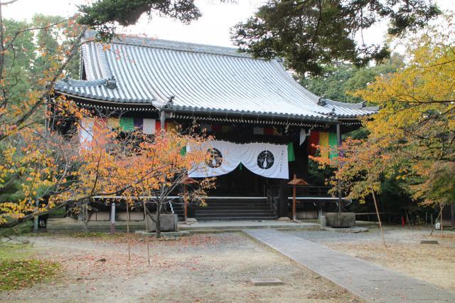 京都府光明寺の本殿