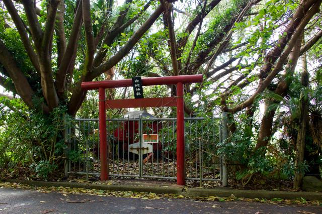 鹿児島県白蛇神社の鳥居