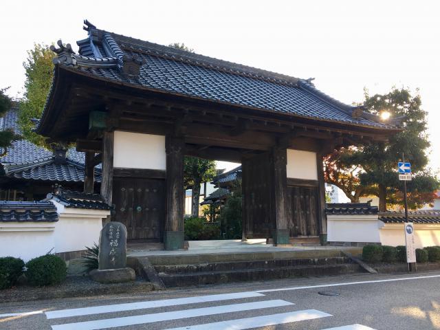 兵庫県福成寺の山門
