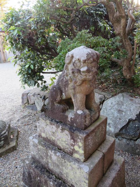 奈良県宅春日神社の狛犬