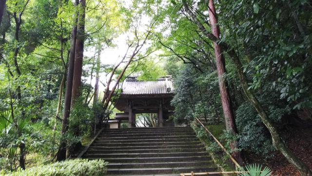 滋賀県龍潭寺の山門