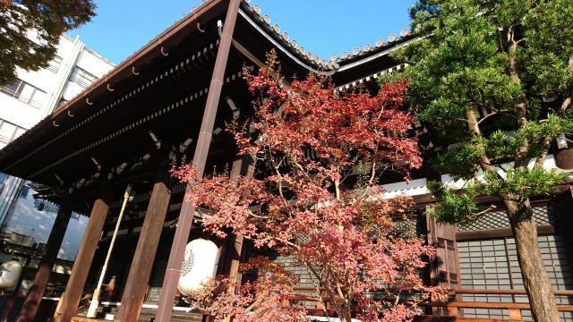 京都府本能寺の本殿