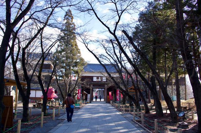 眞田神社の自然
