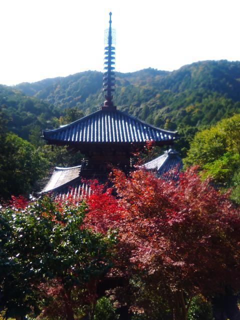 兵庫県一乗寺の写真