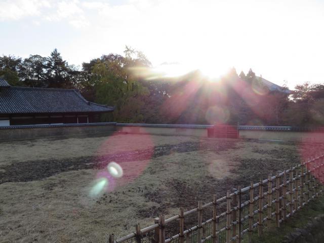宝珠院(奈良県近鉄奈良駅) - 景色の写真