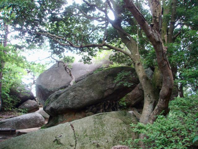 京都府笠置寺の自然