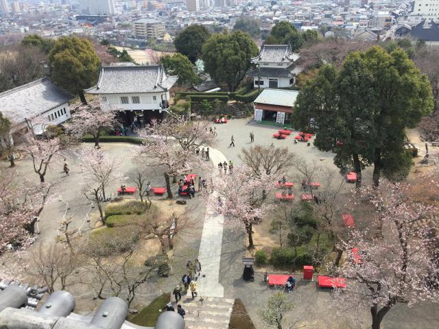 三光稲荷神社(愛知県犬山遊園駅) - 周辺の写真