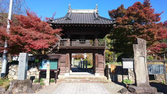 法泉寺の山門