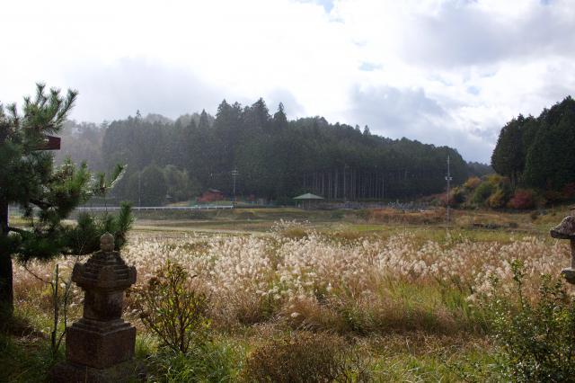 京都府福常寺の景色