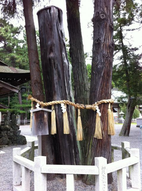 建部神社の自然