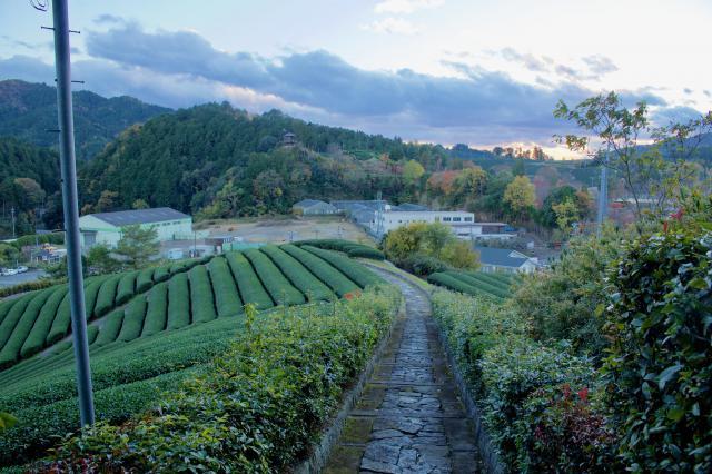 京都府安積親王陵墓の景色