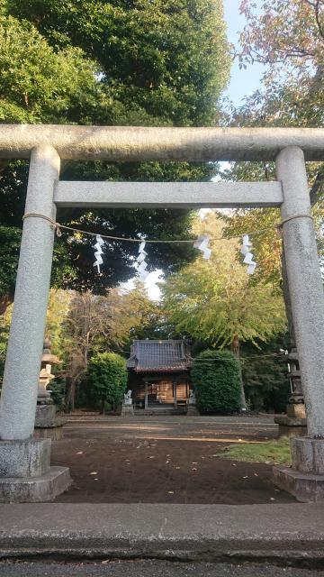 神奈川県左馬神社の鳥居