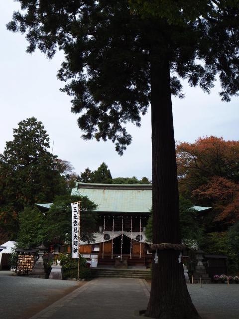 神奈川県三宮比々多神社の本殿