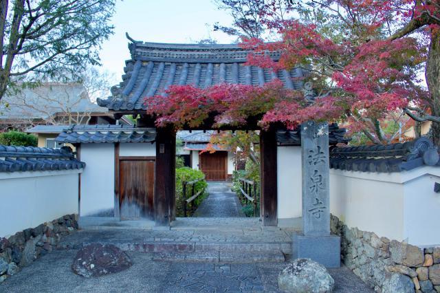 法泉寺の自然
