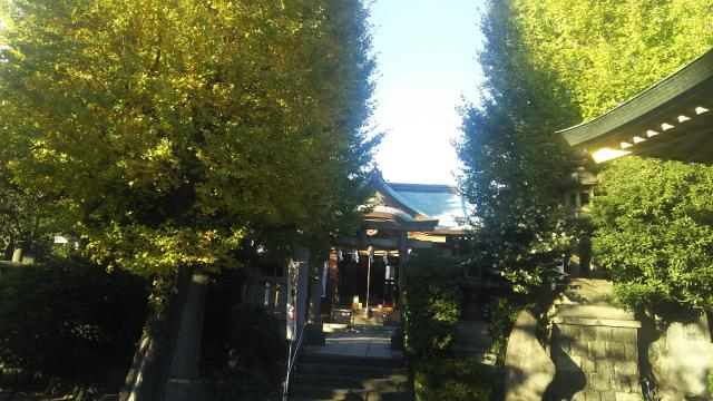 白鬚神社の本殿