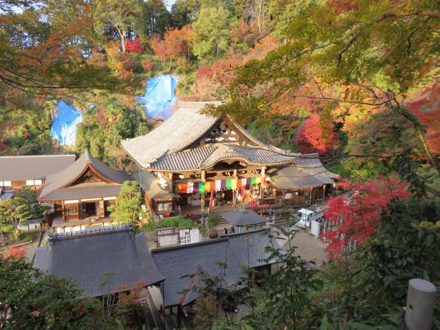 奈良県岡寺(龍蓋寺)の本殿