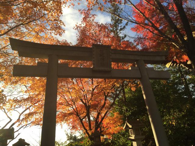 茨城県常陸国出雲大社の本殿