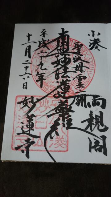 千葉県妙蓮寺の御朱印