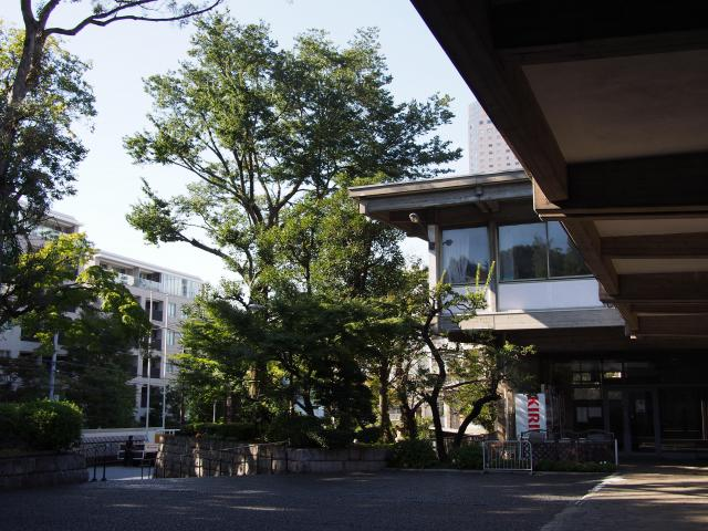 東京都乗泉寺の自然