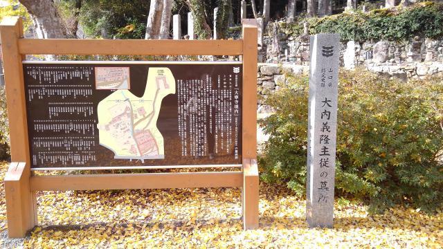 大寧寺の歴史