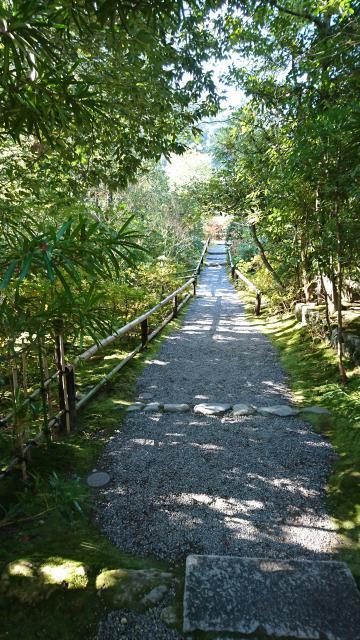 光悦寺の自然